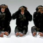 Desinterés e ignorancia