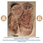El ocre como elemento simbólico en la prehistoria