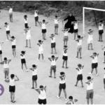 La educación afectivo-sexual en España